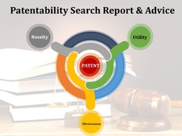 Patentability Advice & Search Report