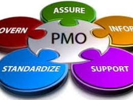 Provide PMO/Project Support