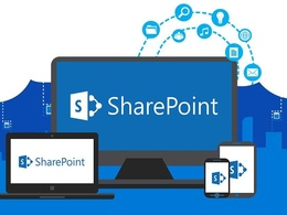 Offer Setup and support of Office 365 email / SharePoint