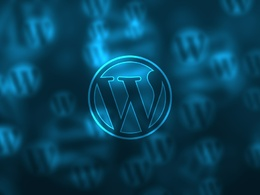 Provide 1 hour of Wordpress website update / fixes / maintenance