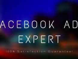 Setup, run and manage a Facebook ad campaign for your business