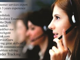 Customer services and satisfactions (5 hours/day)