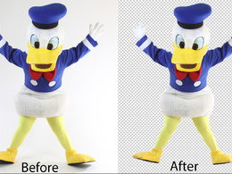 Do cut out  or background removal 20 images