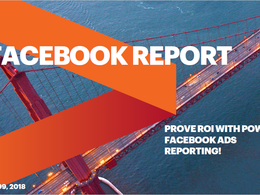 Generate In-depth Facebook report for your page