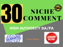 Provide 30 Niche Relevant Manual Blog Comment Backlinks