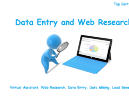 Will do Data Entry or Web Research (upto 5 hours)
