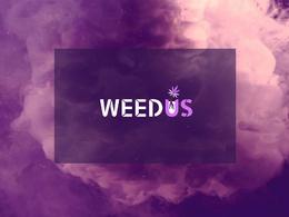 ⚡ Premium Logo Design 5 Concepts + Artwork ⚡