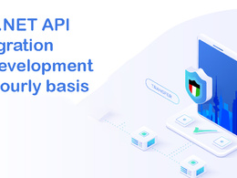 Provide ASP.NET API integration or development on hourly basis