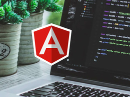 Develop bespoke webapp with Angularjs (per hour rate)