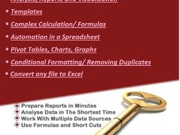 Build professional custom excel spreadsheet using formula, chart
