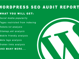 Review your wordpress site and provide SEO audit report