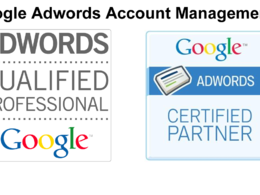 Manage your Google Adwords pay per click (PPC) campaigns