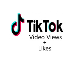 Promote your Tik Tok to gain REAL video views + likes (Basic)