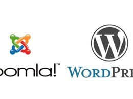 Solve any type of  Error/Issue In Joomla or Wordpress
