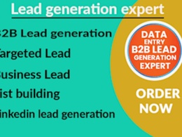 Do 100  b2b lead generation & GEO targeted lead prospecting