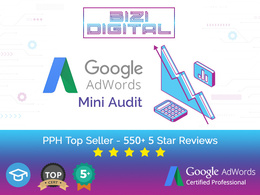 Assess Your Google Ads Account Performance With A Mini Audit Rep