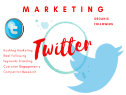 Professionally Do Twitter Marketing and Promotion