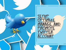 Do Professional Twitter Marketing and Promotion