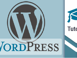 Hourly support to fix the WordPress Plugin