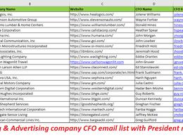 Deliver 300 Valid Email Address Of CEO's, CFO, VP, Directors
