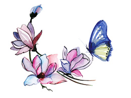 Create watercolor illustration for you