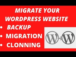 I will migrate your wordpress website in 24 hours