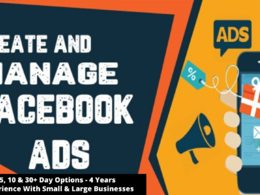 Be your Facebook Ads Manager for 5 days