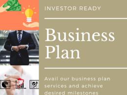 Write professional business plan