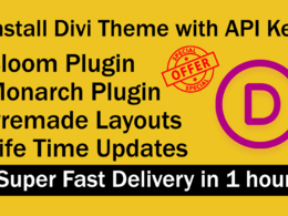 Install the divi theme and divi API key with plugins