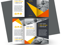 Design very attractive and good Brochure/catalog