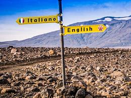 Translate up to 1000 words English/Italian