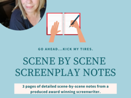 Give actionable notes on your screenplay