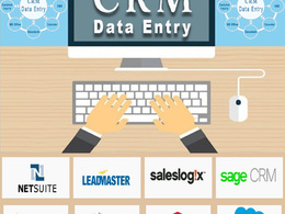 Provide CRM Based Software Data Maintenance Services (per hour)