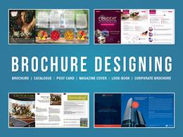 Design Creative & Luxury Brochure / Catalog / Post Cards