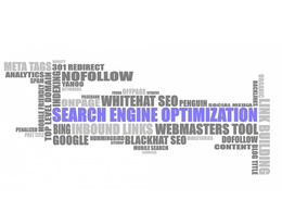 1000 words SEO web content within 24 hours