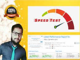Do wordpress website speed optimization