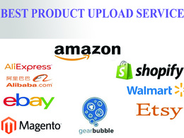 Do 200 product listing on any online store or on your website