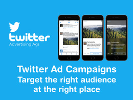 Will set up and manage successful twitter ads campaigns