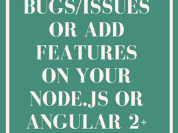 Fix issues/bugs/add features on your Node.js/Angular 2+ website