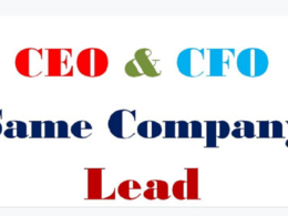 Provide 100 CEO/CFO email leads at the same company with info