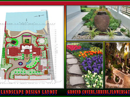 Will draft  & design your Landscape for $20