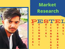 Provide PESTEL Analysis