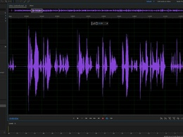 Edit up to 30 minutes of podcast audio!