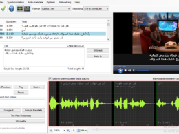 Translate 2  Eng. videos to Arabic (4-6 minutes) on SRT file