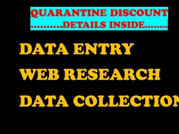 Do excel data entry, data collection, web research, typing work