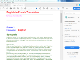 Translate languages perfectly (for 500 words)