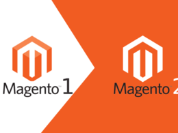 Do any task related to magento 1 and 2 for 1 hour