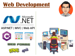 Help you develop a web application