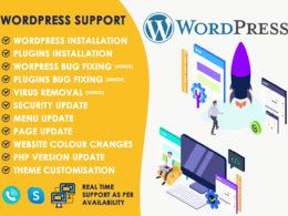 Provide WordPress support for 1 Hour - Phone, Skype or Remote