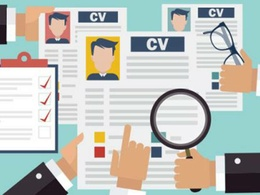 Write a professional CV within 2 days